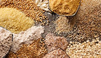 achizitii-cereale-pisano